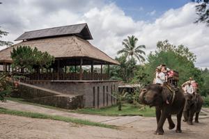 Bali-elephant